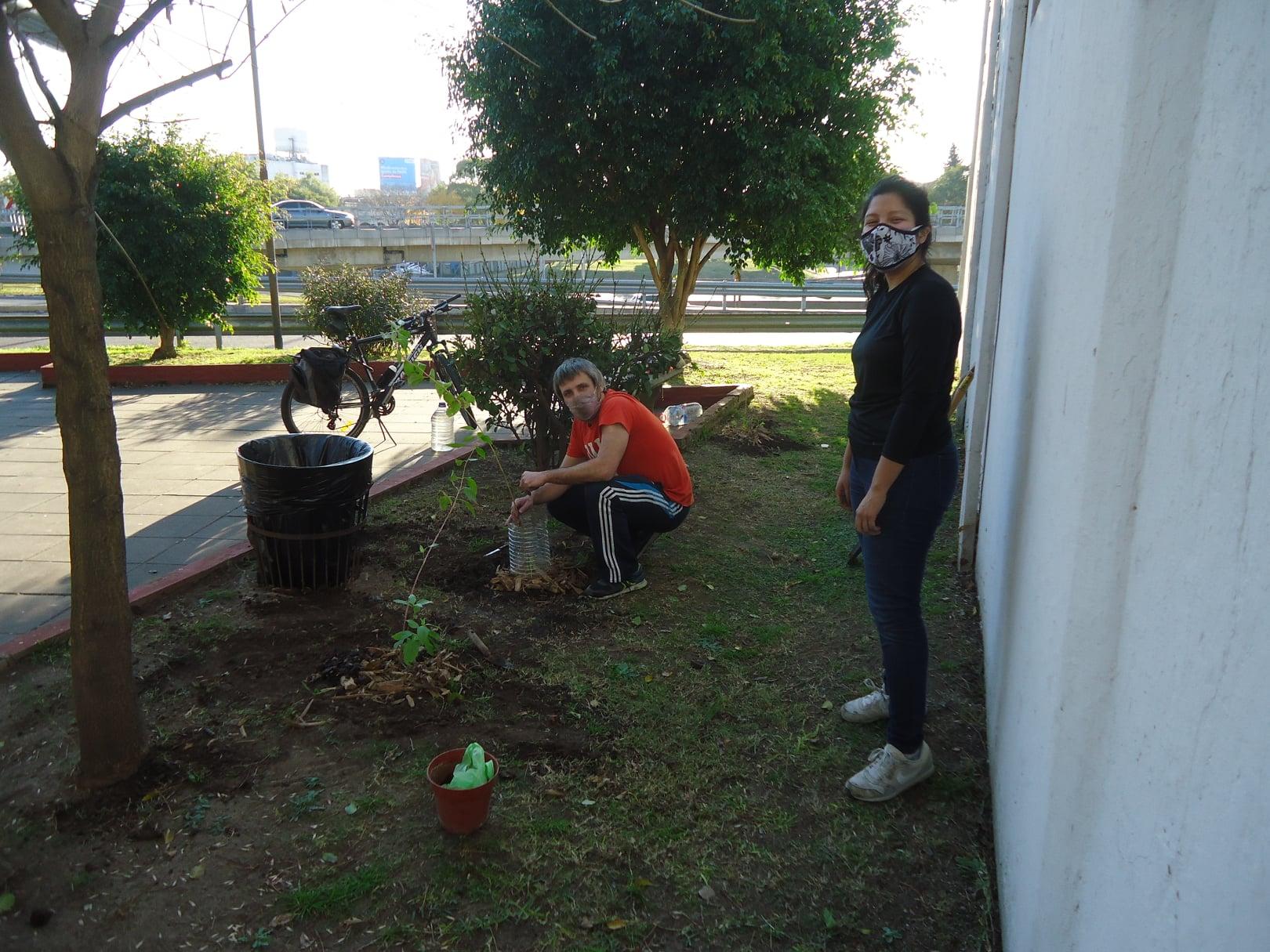 Vecinos de Saavedra plantaron árboles nativos en la plazoleta de Salto y colectora General Paz